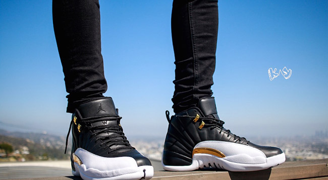 air jordan 12 wings